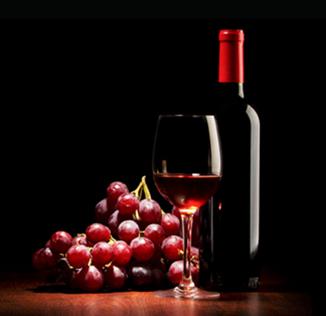 khám phá quy trình sản rượu vang nho